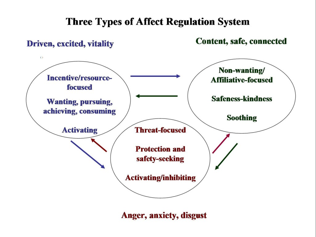 Affect-regulation-systems